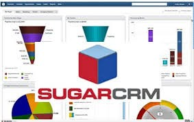 crm A Software Solution To Revolutionize Business: CRM Software And Increased Productivity