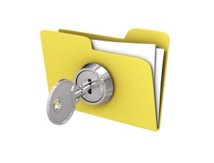 lock file 300x229 How to protect your business in the New Year