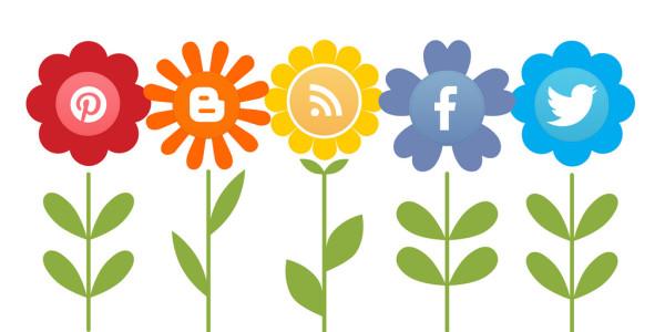 social media growing